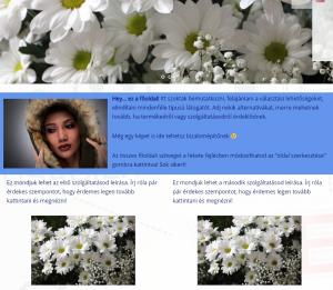 Websiker Weboldal Blokk design